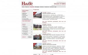 Hazle & Co's old website